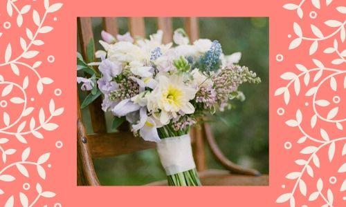 1) Daffodil