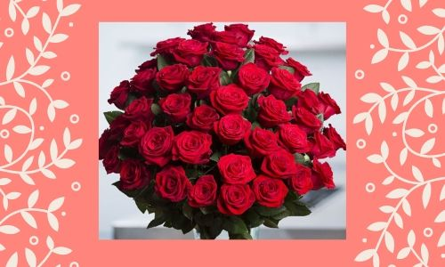 2) Rosa