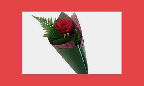 7. Bouquet di rose rosse single