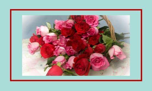 3. Bouquet di rose rosse e rosa
