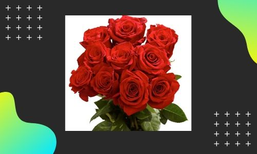 7. Bouquet di rose rosse