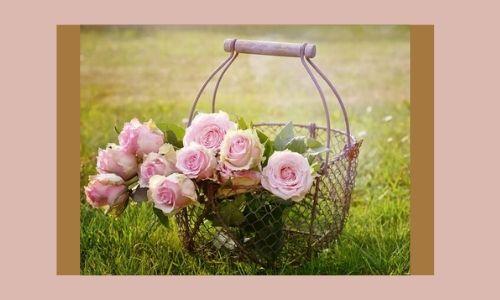2. Bel fiore: