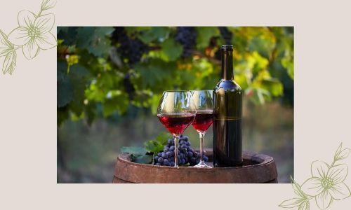 1. Vino rosso