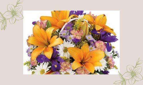 3. Fiore fresco
