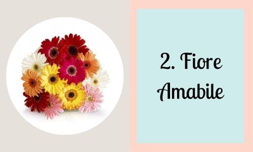 2. Fiore amabile