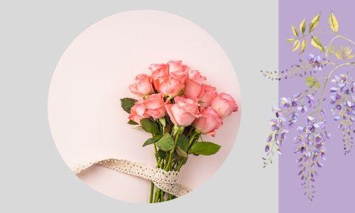 2. Belle rose rosa