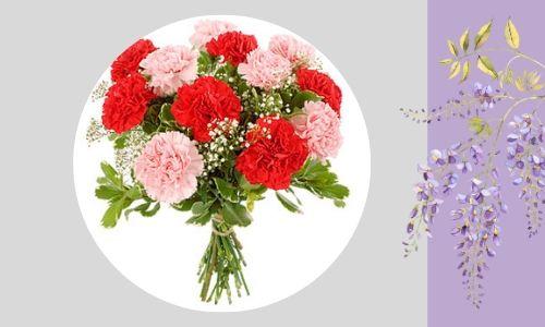 4. Adorabili garofani rosa e rossi