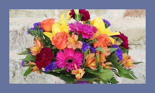 6. Il fiore è colorato