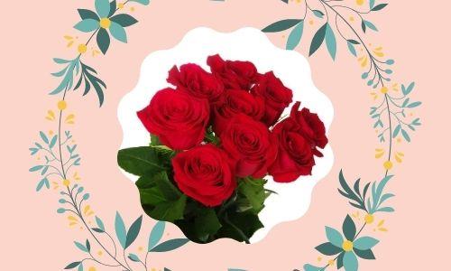 1. Rose rosse