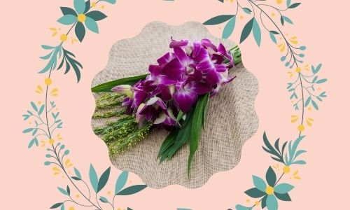 3. Orchidee