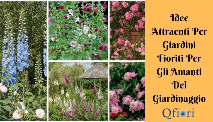 Idee Attraenti Per Giardini Fioriti Per Gli Amanti Del Giardinaggio