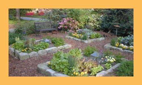 4. Giardino fiorito di erbe