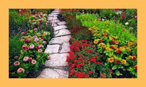5. Taglio giardino perfetto