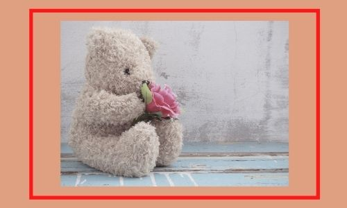 3. Bouquet di rose in peluche perfetto