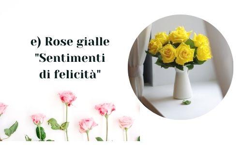 e) Rose gialle