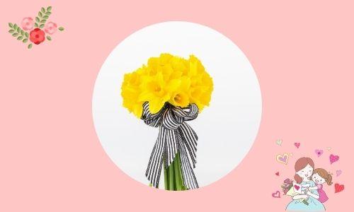 4. Ti apprezzo - narciso giallo