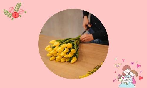 6. Il mio migliore amico - Tulipani gialli