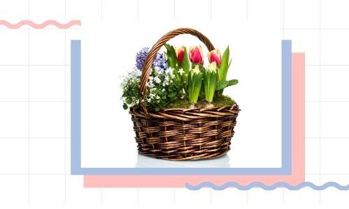 3) Cesto regalo da giardino